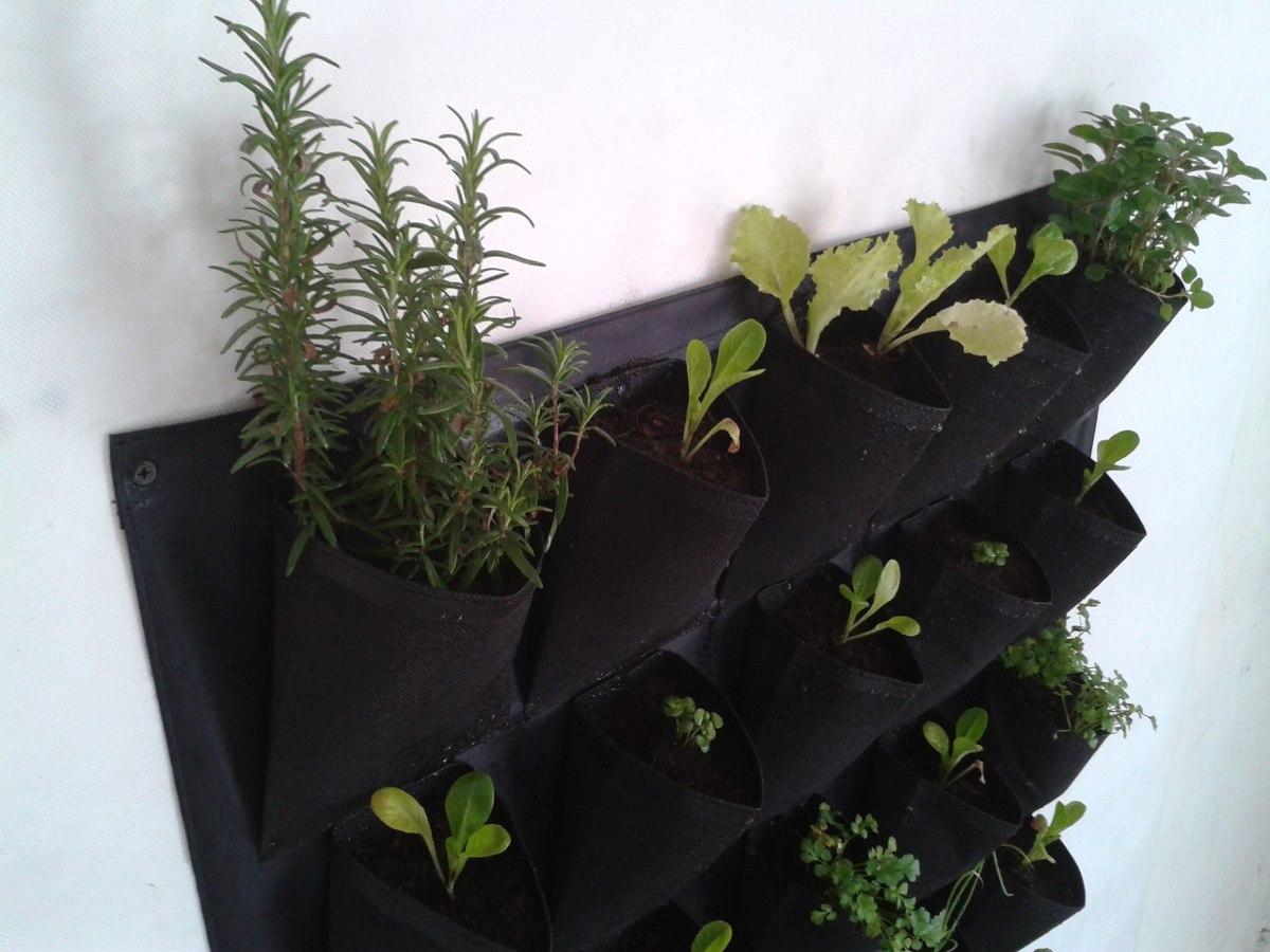 Plantas verticales excellent tienda online de plantas for Pockets jardin vertical