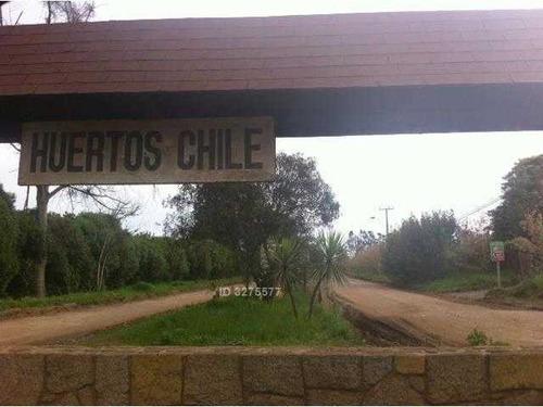 huerto de chile 66