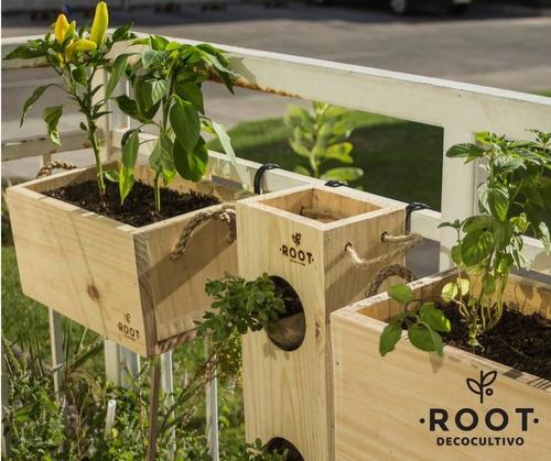 huerto departamento plantas