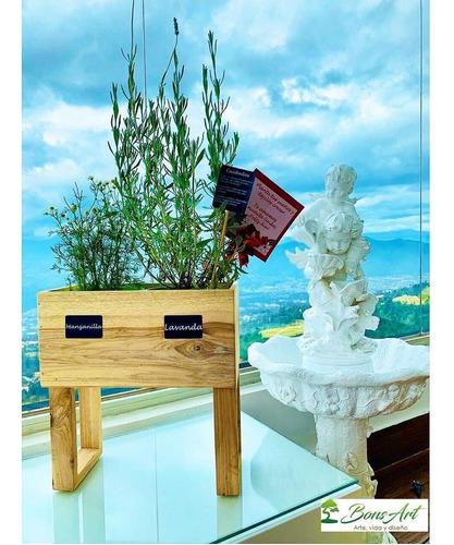 huertos, plantas medicinales y comestibles. bonsart