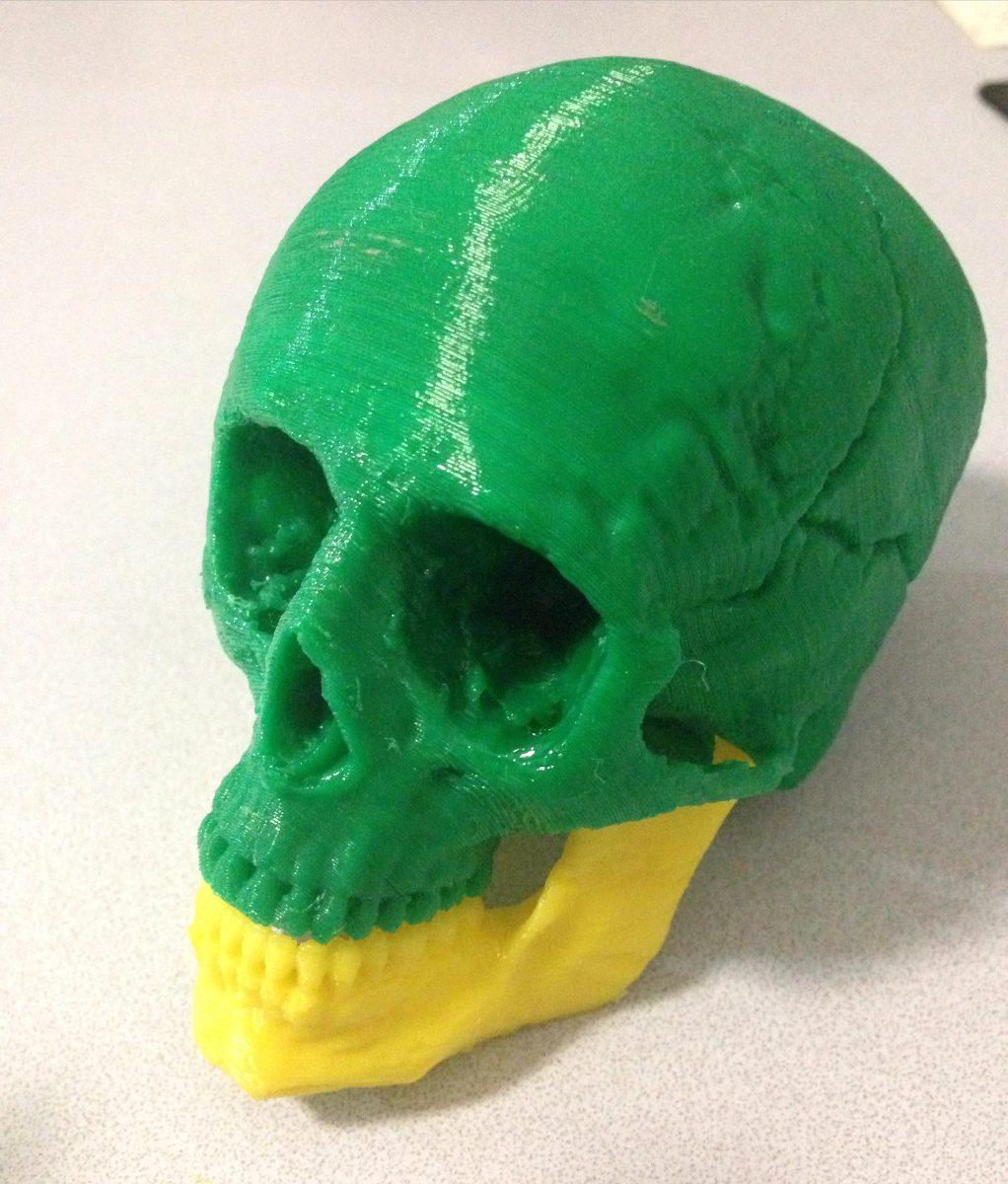 Huesos Humanos Impresos En 3d - $ 400,00 en Mercado Libre