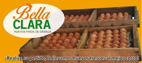 huevo mediano nº2 55g por mayor 12maples huevos finos
