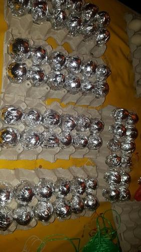 huevos fertiles de gallina araucana