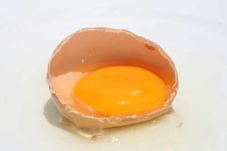 huevos gallina repartos gratis a domicilio