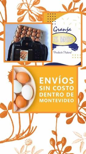 huevos super grandes caseros!! cajon de 30 docenas
