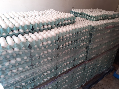 huevos x cajon $ 3.000