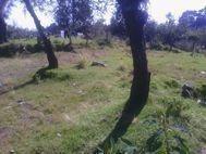 huitzilac, terreno en venta, tres marias,morelos