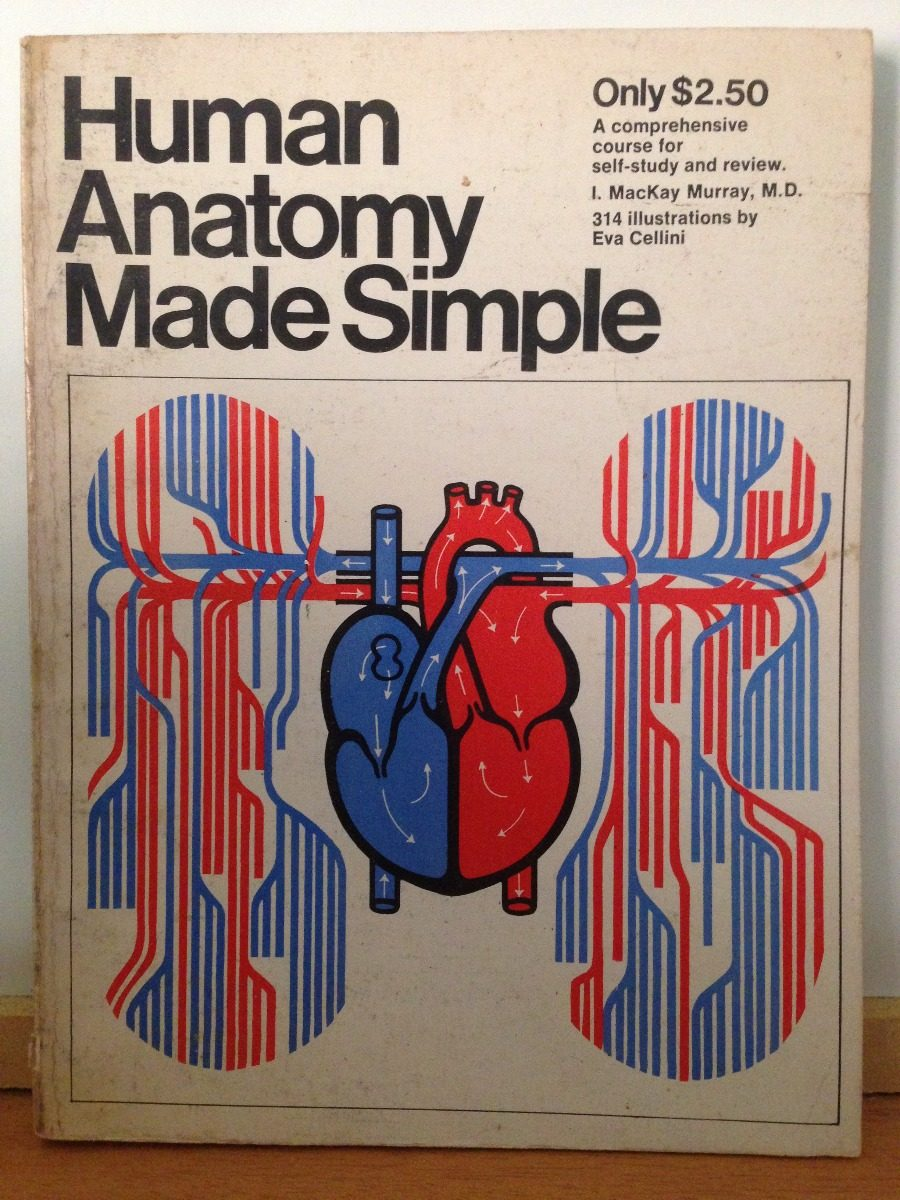 Anatomy Made Simple Gallery - human anatomy diagram organs