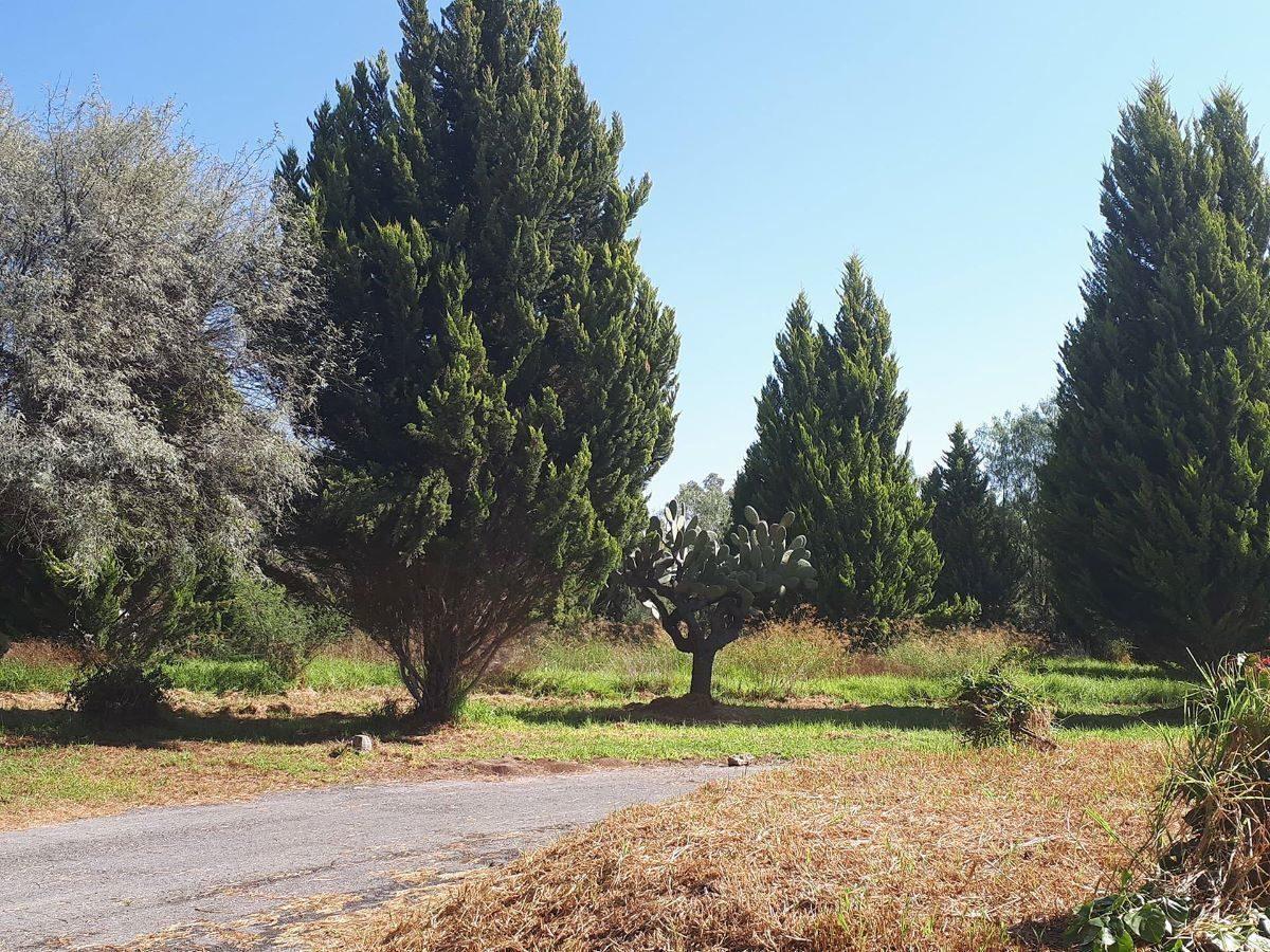 hurban vende terreno en edén los sabinos.