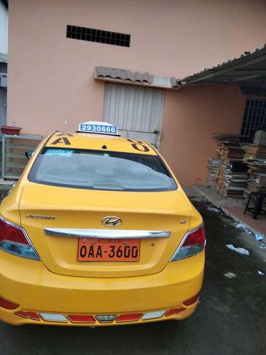 hyundai accent accent taxi