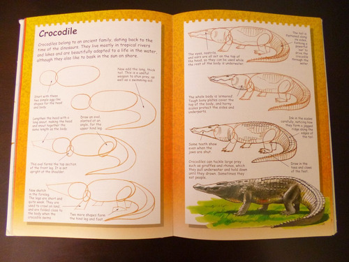 I Can Draw Libro De Dibujo Terry Longhurst en Ingls