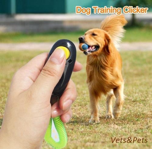 i-clicker clicker adiestramiento entrenam canino / tienda