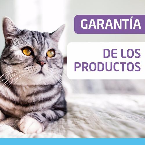 iams cat kitten 3 kg alimento gatitos envíos gratis