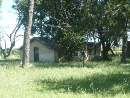 ibarlucea, 12 ha, a un km de ruta 12, excelente acceso