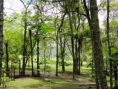 ibiúna chácara condomínio ecológico c/10.000m2 à 50km de sp