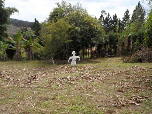 ibiúna chácara ibiúna com 5.000 m2; formada com lindo pomar