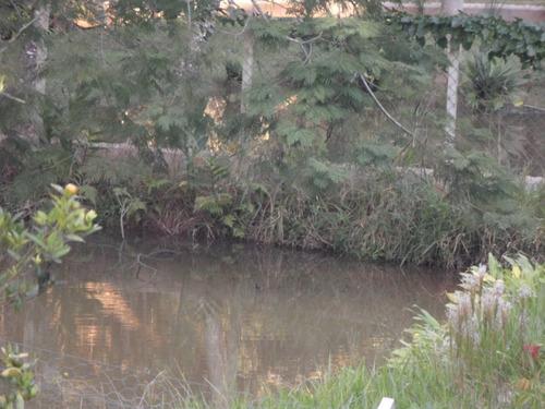 ibiúna; condomínio fechado 1.600,00m2, c/lago só r$ 239 mil
