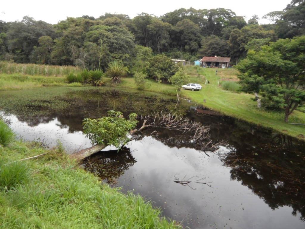 ibiúna lindo sítio pesqueiro particular c/30.000,00m2, 3lago