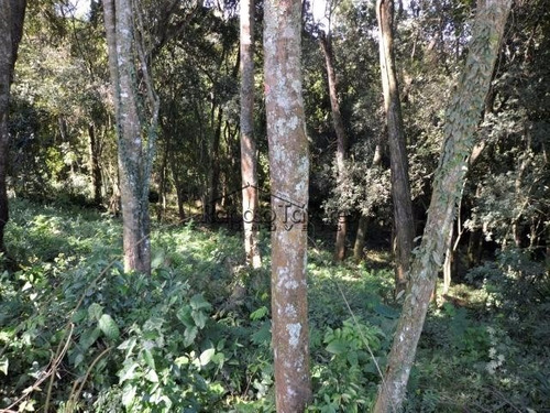 ibiúna são roque itu condomínio chácaras sítios fazenda 1351