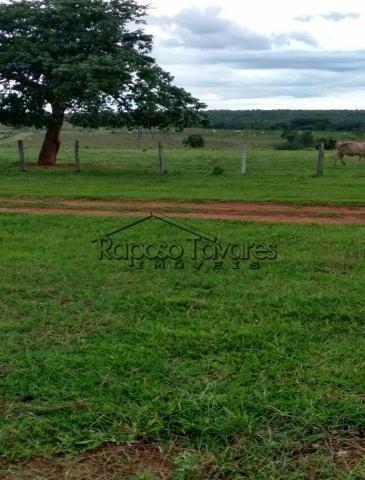 ibiúna são roque itu novo são joaquim sítios fazenda 1644