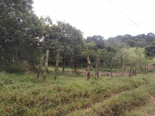 ibiuna - terreno frete para estrada ref: 04014