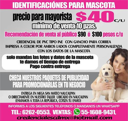 identificacion mascotas placa