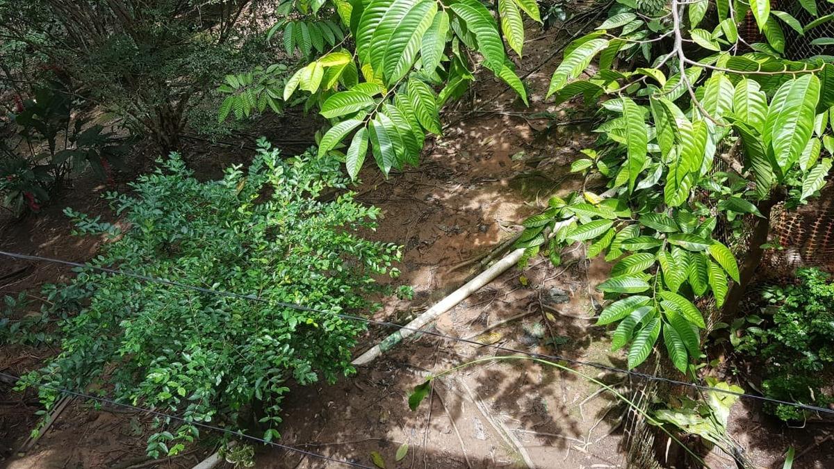 iguape / campo / praia / troca cananeia / oportunidade - 04813 - 33738836