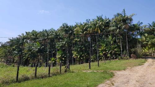 iguape/50 alq/galpão/represa/plantação/criação/ref: 04928