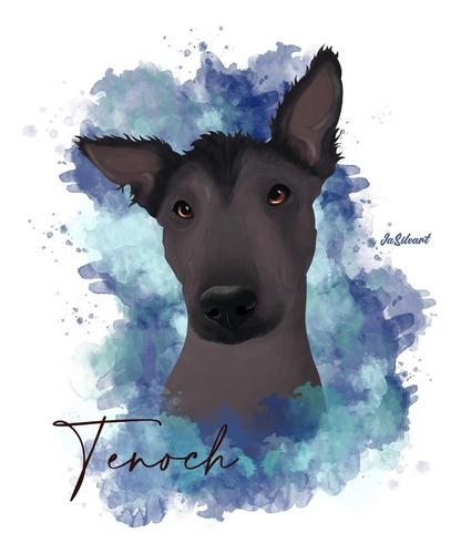 ilustración digital de tu mascota
