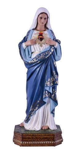 imagem sagrado coração de maria