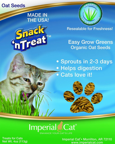 imperial gato fácil cultivar semillas hierba de avena, de 4