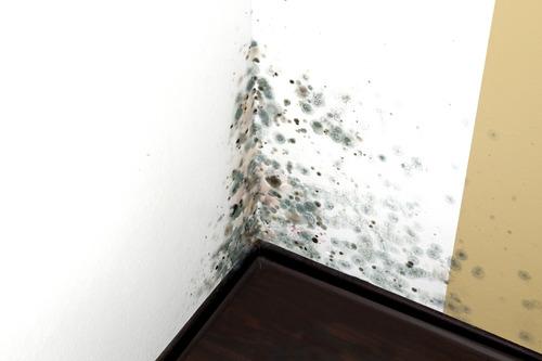 impermeabilización humedad ascendente de cimientos sibaco