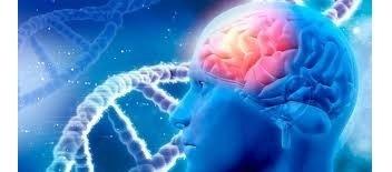 implante células madre