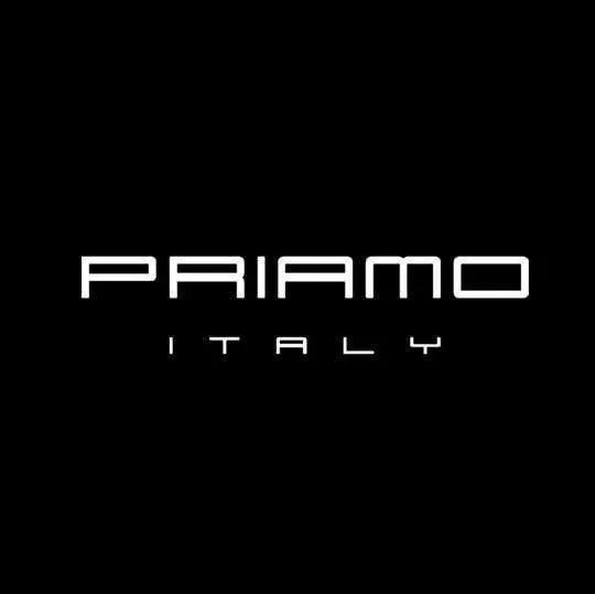 5fd7e2b6cd4cc Importados ! Priamo Italy Zapatos Hombre Diseño Avestruz T43 ...