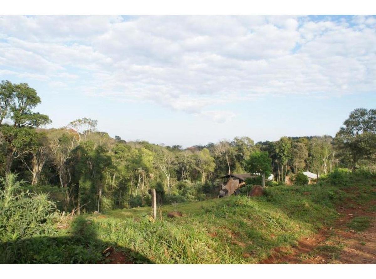 importante fracción de campo - colonia paraíso (misiones)