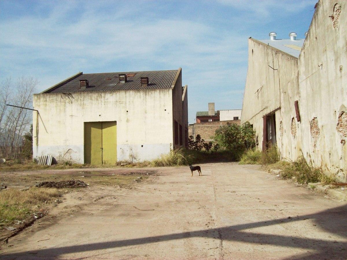 importante inmueble industrial  villa dominico