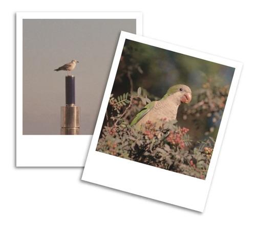 impresión de fotos tipo polaroid