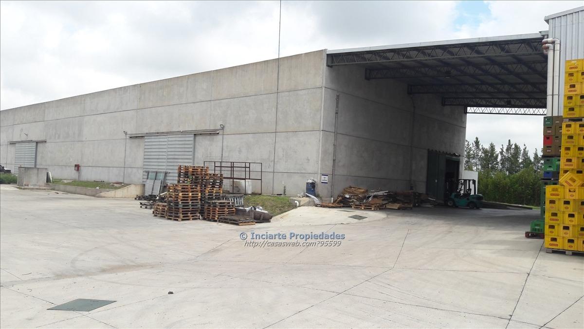 inciarte: espectacular planta industrial
