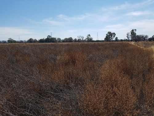 increãble terreno en la pila en san luis potosã.