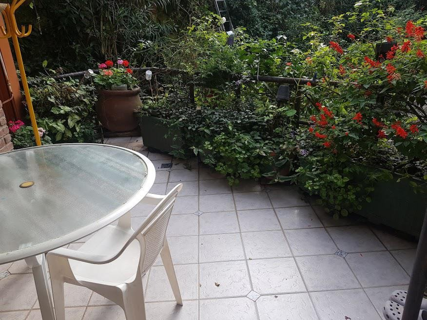 increible casa en caballito con gran jardin con plantas