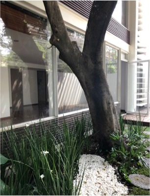 increible garden house en polanco!