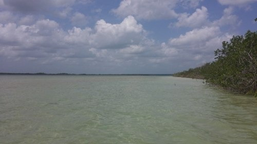 increíble lote hotelero en venta con 280 mts lineales en la laguna de bacalar c1314