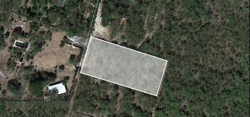increíble terreno en xcunyá en venta
