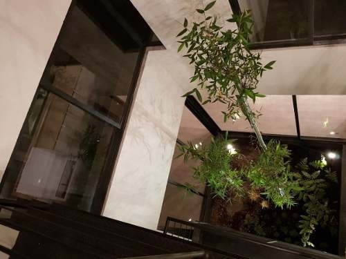 increibles departamentos con roof garden privado!