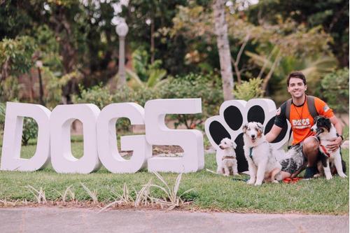 incrível dog - educação canina