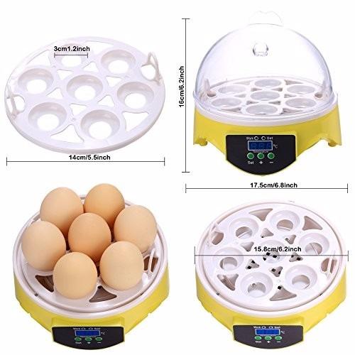 incubadora 7 huevos 220v