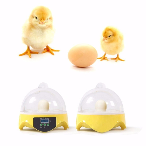 incubadora 7 huevos volteo manual gallina o pato