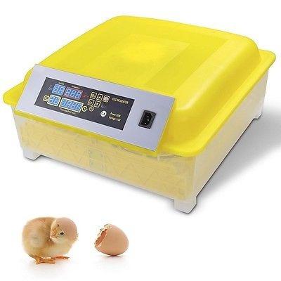 incubadora digital para 48 huevos