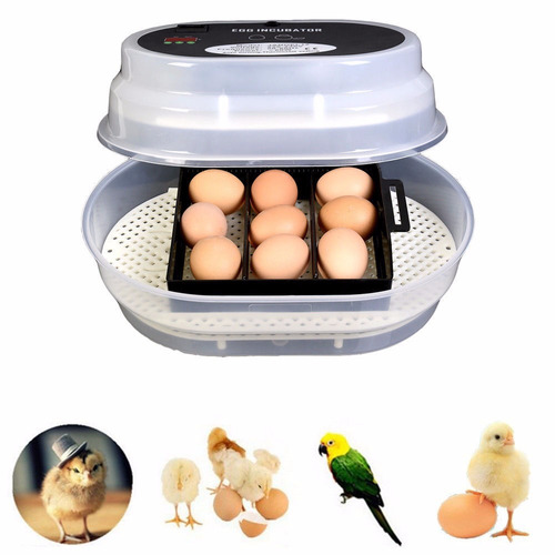 incubadora pollos volteador automatico 7 a 12 huevos incubar