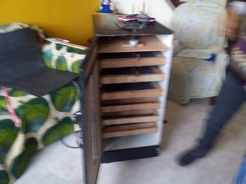 incubadoras artesanales completas
